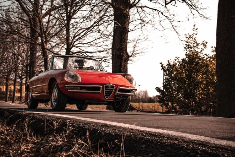 """1970 Alfa Romeo Duetto 1750 """"osso di seppia"""" 4"""