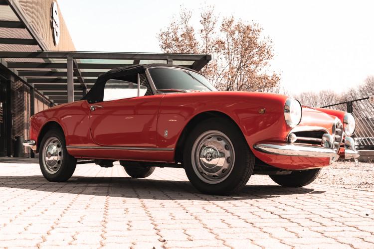 1963 Alfa Romeo Giulia Spider  5