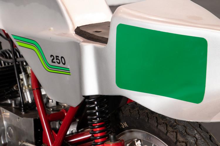 1973 Benelli 250 Corsa I° Serie 6