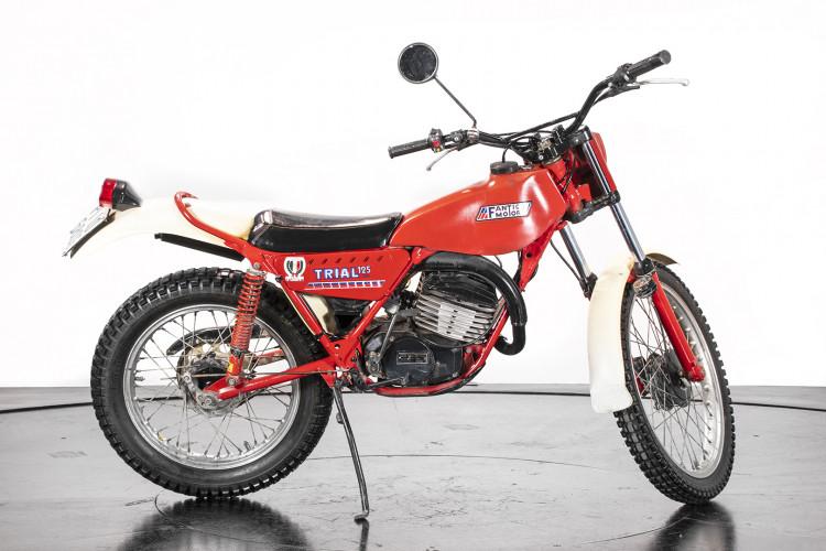 1981 Fantic Motor TX 250 3