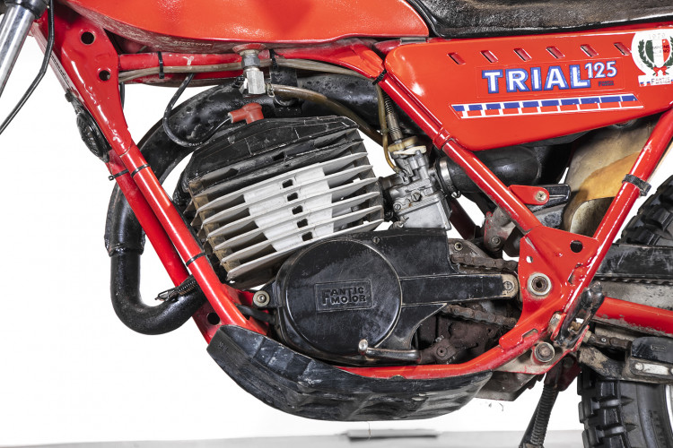 1981 Fantic Motor TX 250 6