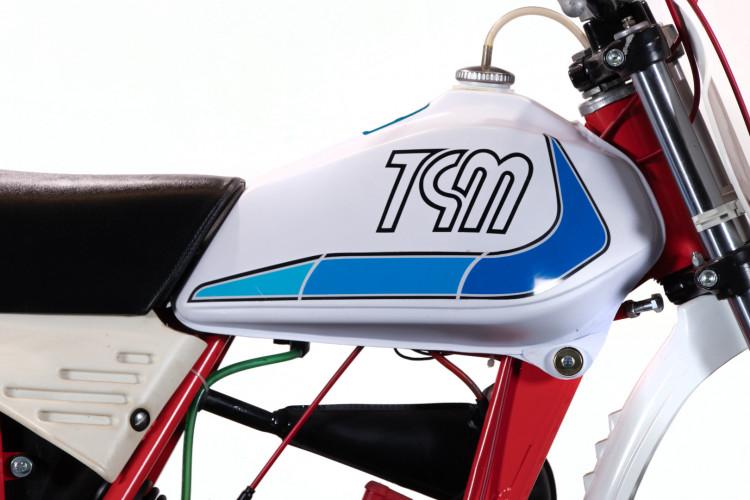 1980 TGM 50 Competizione Minarelli 19