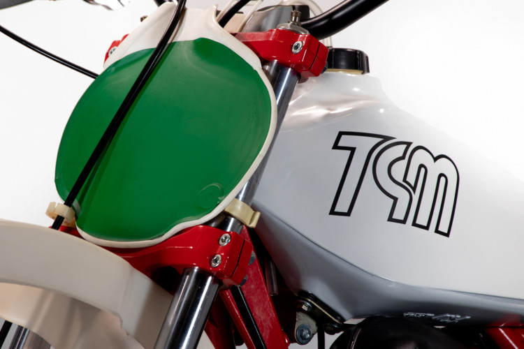 1979 TGM 250 Competizione 10
