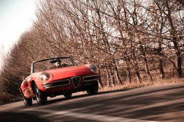 """1970 Alfa Romeo Duetto 1750 """"osso di seppia"""""""