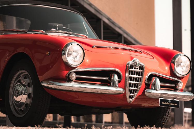 1963 Alfa Romeo Giulia Spider  10