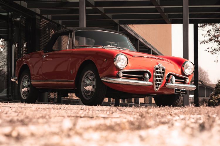 1963 Alfa Romeo Giulia Spider  0