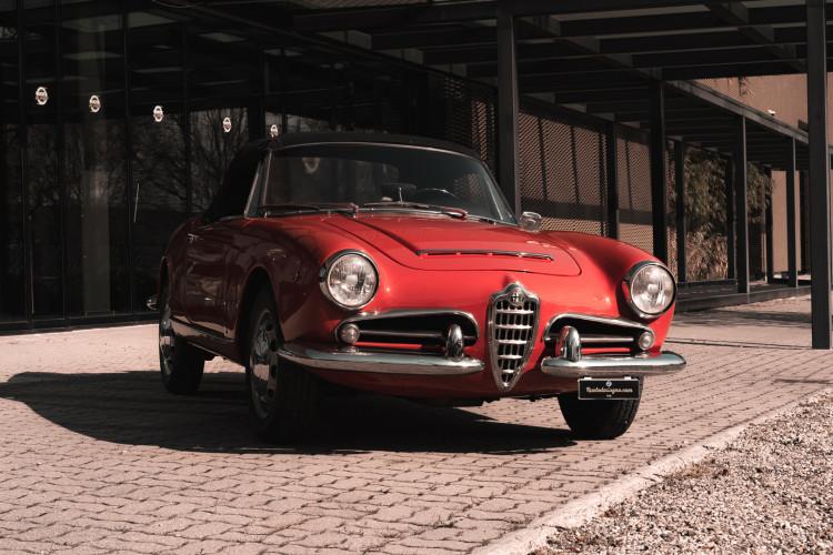 1963 Alfa Romeo Giulia Spider  1