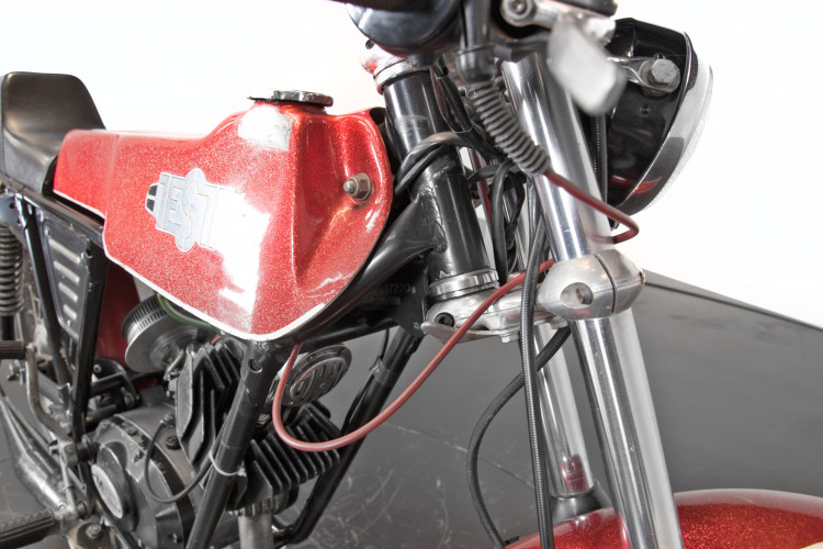 1974 Testi Champion P4 9