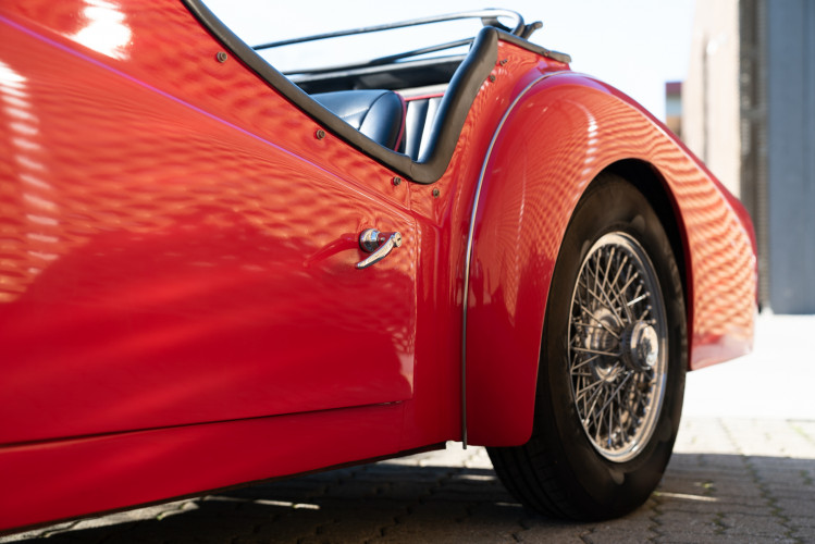 """1958 Triumph TR3A """"Bocca Stretta"""" 25"""