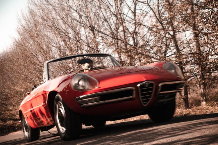 """1970 Alfa Romeo Duetto 1750 """"osso di seppia"""" 7"""