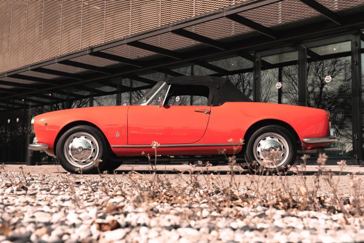 1963 Alfa Romeo Giulia Spider  4