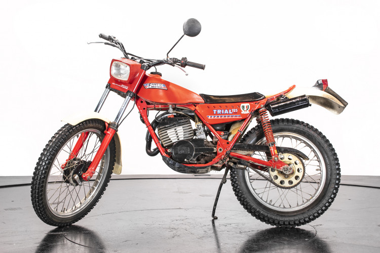 1981 Fantic Motor TX 250 0