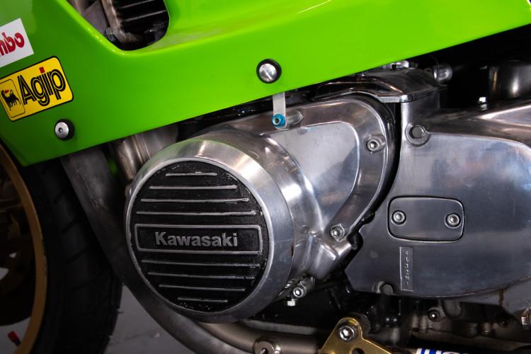 1981 Kawasaki Nico Bakker 13
