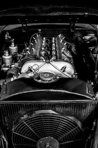 1952 Jaguar XK 120 OTS 36