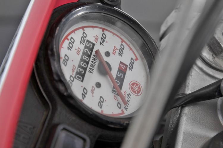 1999 Yamaha TTR 600 7